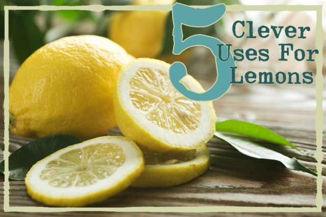 Pucker Power: 5 Clever Uses for (Old) Lemons