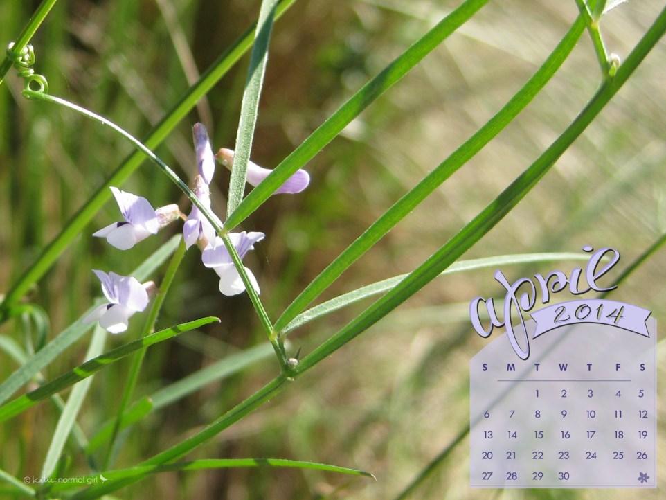 Freebie April calendars from katienormalgirl.com
