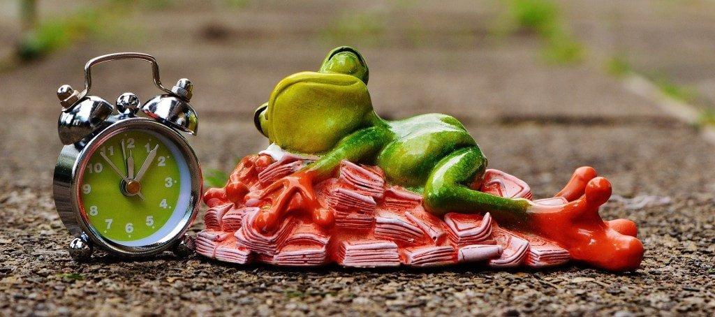 Alt Text: A photograph of a sculpted frog sleeping next to an alarm clock.