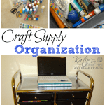 Craft Storage Organization