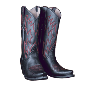Kat Mendenhall Boots | Its not just boots its a lifestyle!