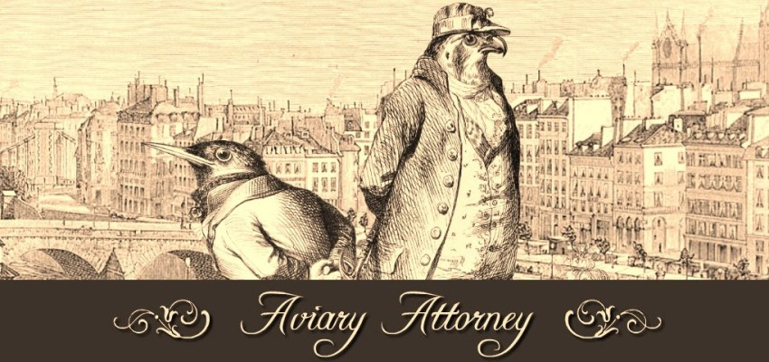 Aviary-Attorney