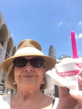 gelato the pink spoon lincoln center
