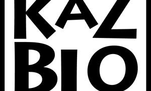 KazblOーカズブロー はじめました。