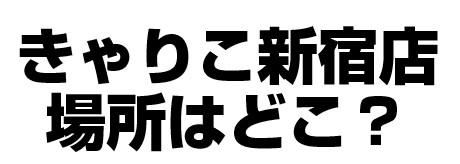 猫カフェきゃりこ新宿店の場所(住所)はどこ?評判も調べてみた!