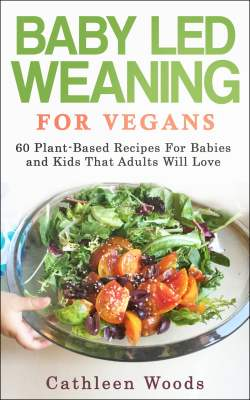 Small Of Vegan Recipes For Kids