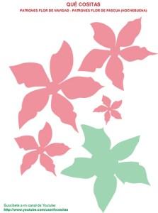 Patrón flor de Pascua