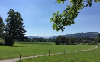 Laluan pejalan kaki  dekat dengan sempadan kampung Muri dan Bandar Bern. Banjaran Alps yang keputihan dapat dilihat dengan jelas dari sini.
