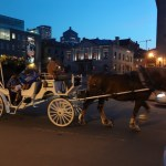So. many. horse. drawn. carriages.