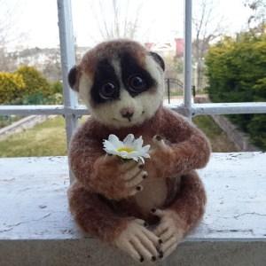 Lemur BoBo :)