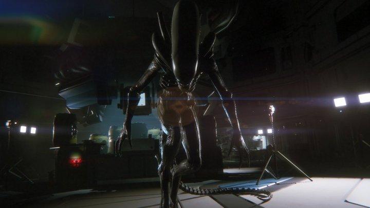chollo alien 5