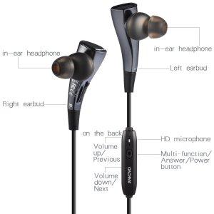 chollo auricular 2