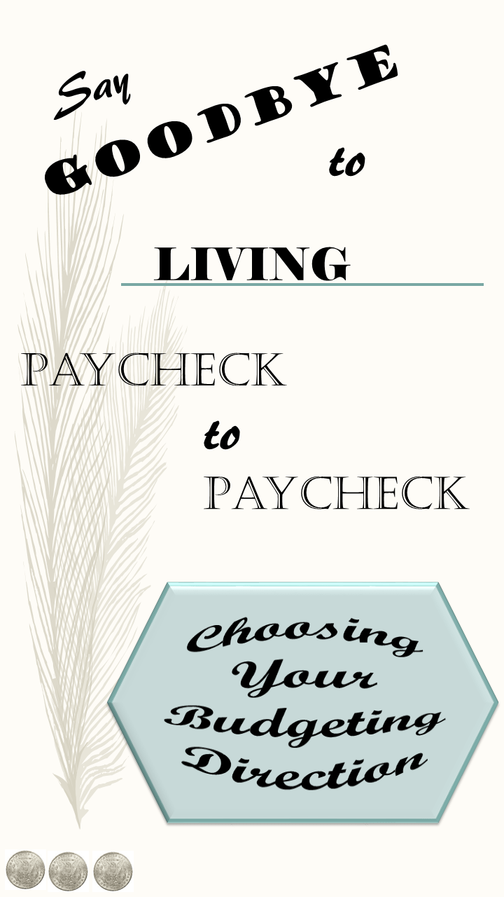Choosing your Budgeting Direction