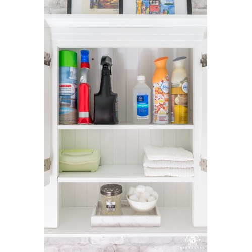 Medium Crop Of Bathroom Shelving Solutions
