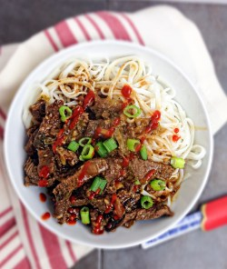Small Of Beef And Noodles Recipe