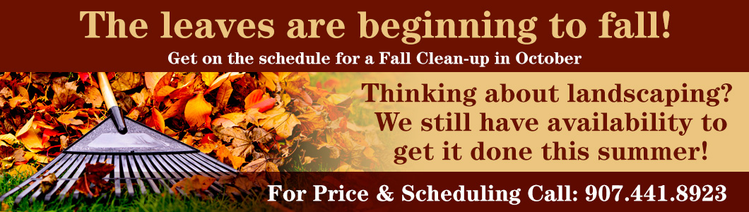 The leaves are beginning to fall! Get on the schedule for a Fall Clean-up in October Thinking about landscaping? We still have availability to get it done this summer! Call: 907.441.8923