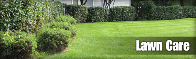 lawncare-header