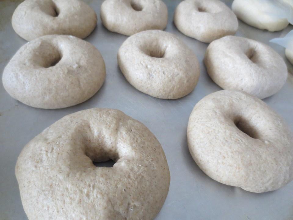 everything-bagel-recipe