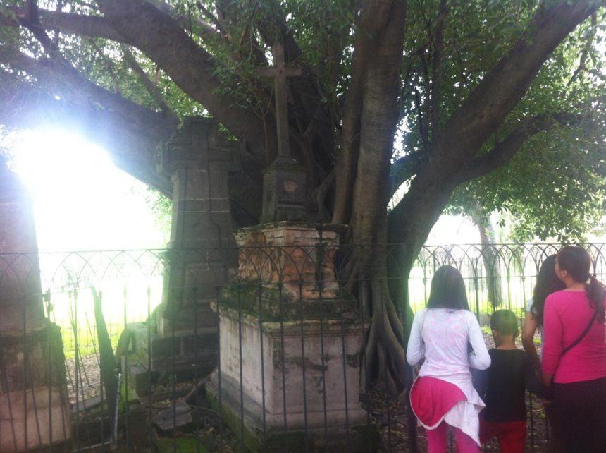 Tumba y árbol del vampiro en el Panteón de Belén de Guadalajara