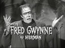 This guy won't win the primary, but when I voted for Fred Glynn, it's who I pictured.