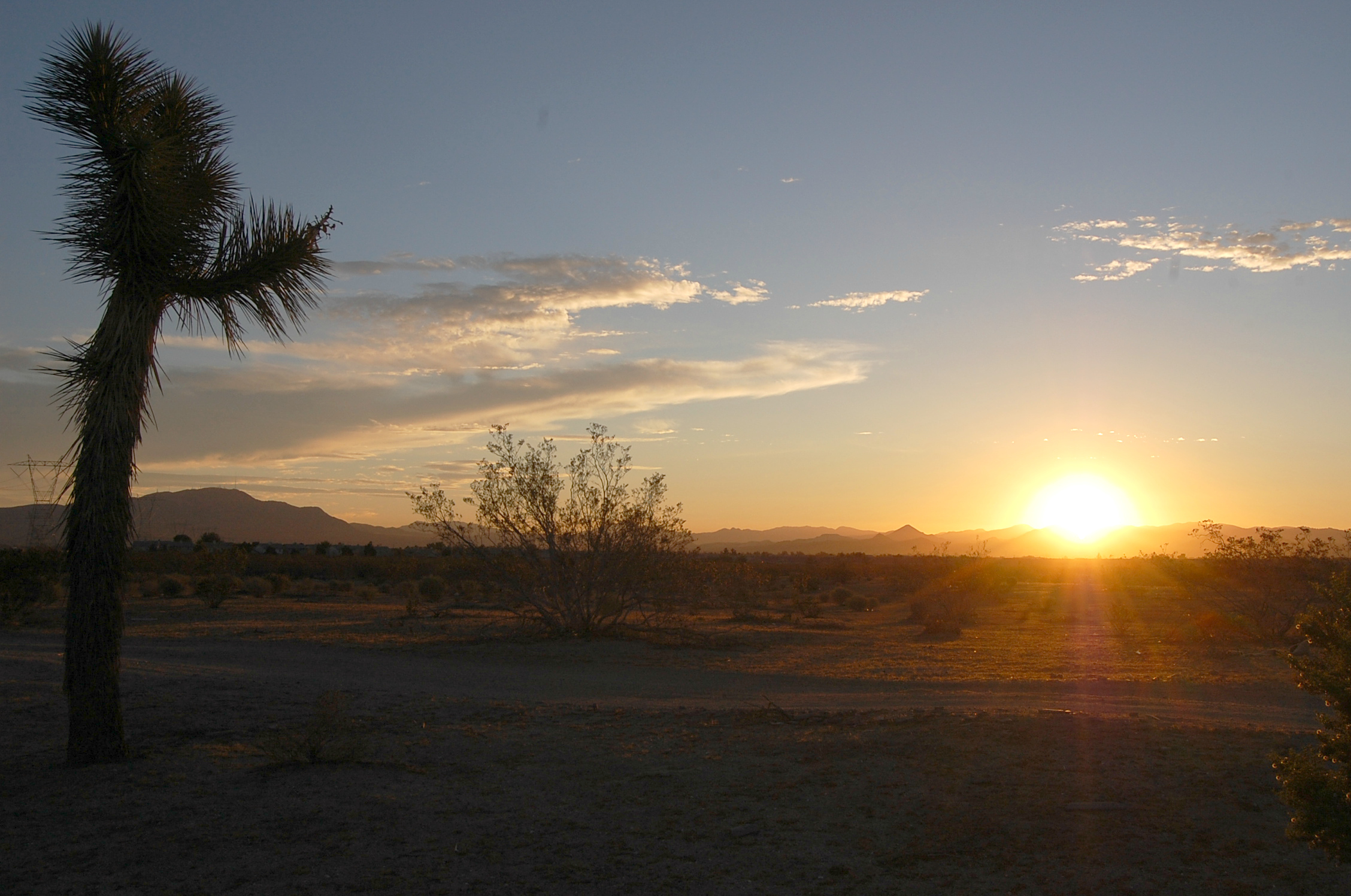 Mojave Desert sunrise | Photo