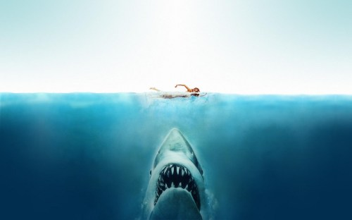 Medium Of Jaws On The Water