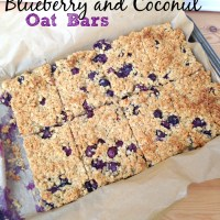 Blueberry and Coconut Oat Bars