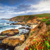 Sonoma-Coast-Landscape-Kevin-Kowalewski-8