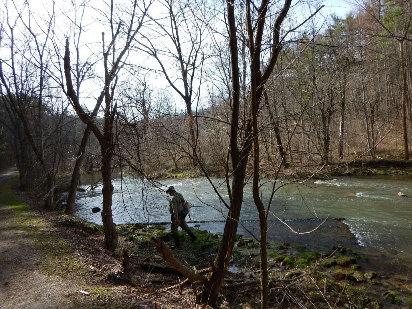 Penns spring 4 12 15 keystone fly guides for Spring creek pa fishing report