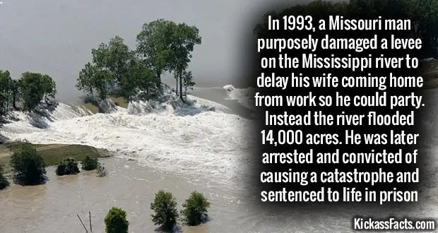1026 Mississipi River Levee