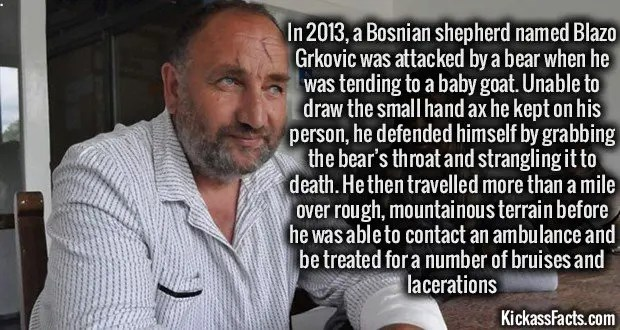 1143 Blazo Grkovic