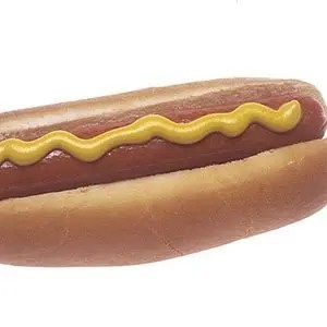 Hot Dog-Random Facts List