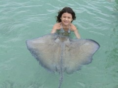 Making friends at Stingray city.