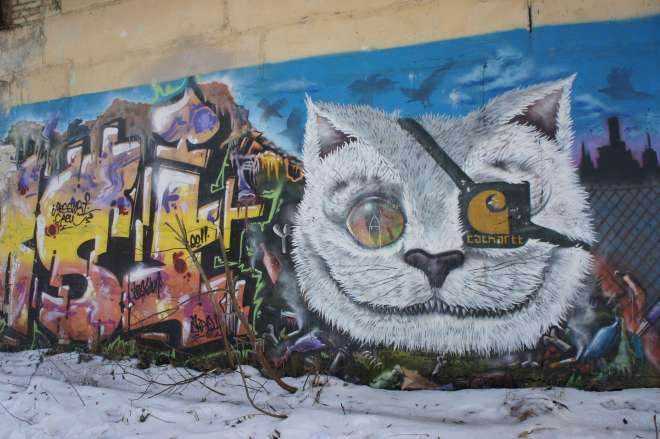 Street art cat Belokamennaya