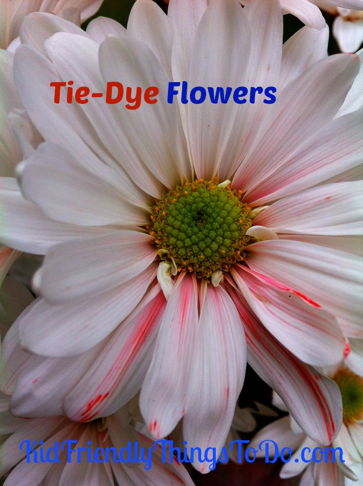 Diy tie dye flowers kid friendly things to for Cool things to do with roses