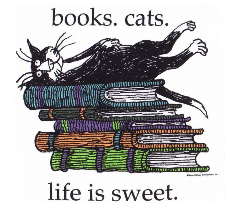 books cat