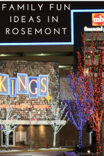 Family Fun Ideas in Rosemont near Chicago