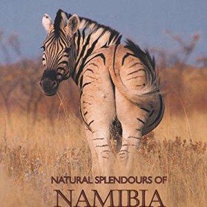 Natural-Splendours-of-Namibia-0