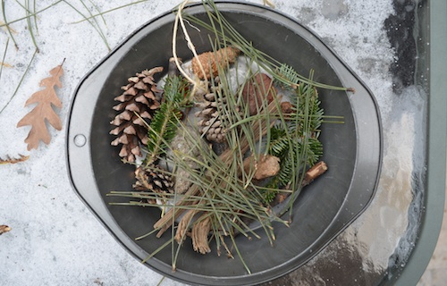 Winter Crafts Nature Hike Kids- Kid World Citizen