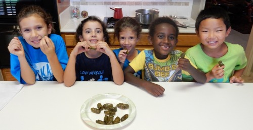 Stuffed Grape Leaves Recipe- Kid World Citizen