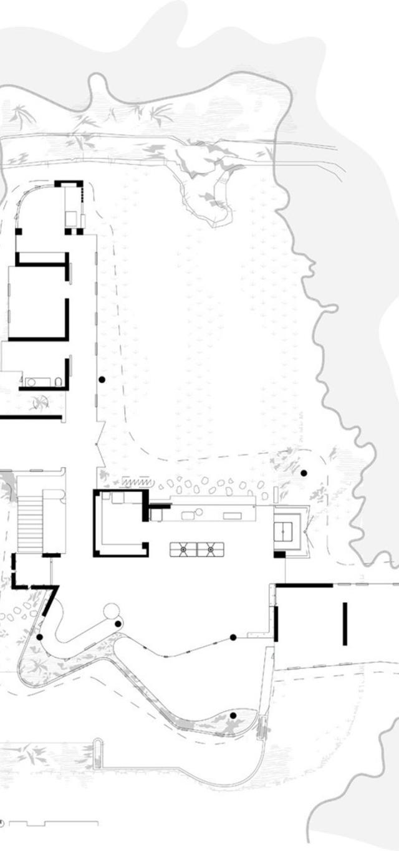 planchonella_100715_30-800x1120 (Copy)