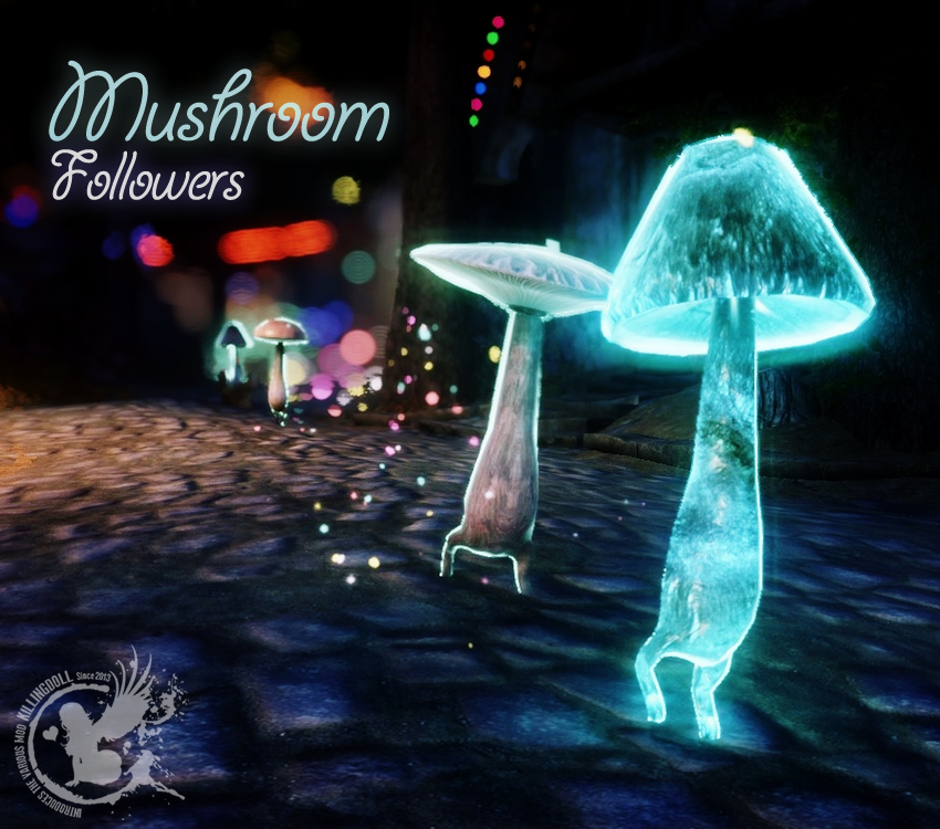 mushroom-followers