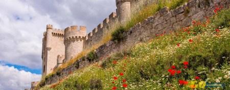 Valladolid Castillo Peñafiel