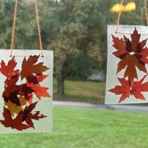 autumn-leaf-suncatchers-1