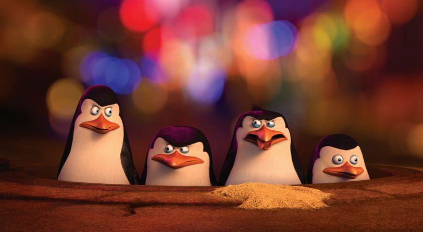 pinguine2