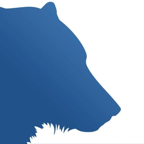 kinetic bear old logo