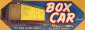 Gus Hall Citrus Fruits - Box Car Label