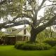Gus Hall House, Tildenville, Florida