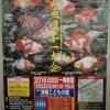 第23回金魚日本一大会 各優勝魚 & 和金親優勝魚