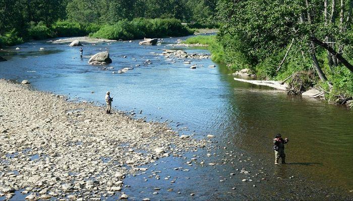夏にすること アユ釣り 川釣り